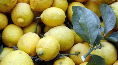 VIDEO: Limun je dobar za visoki tlak, zube, kosu…