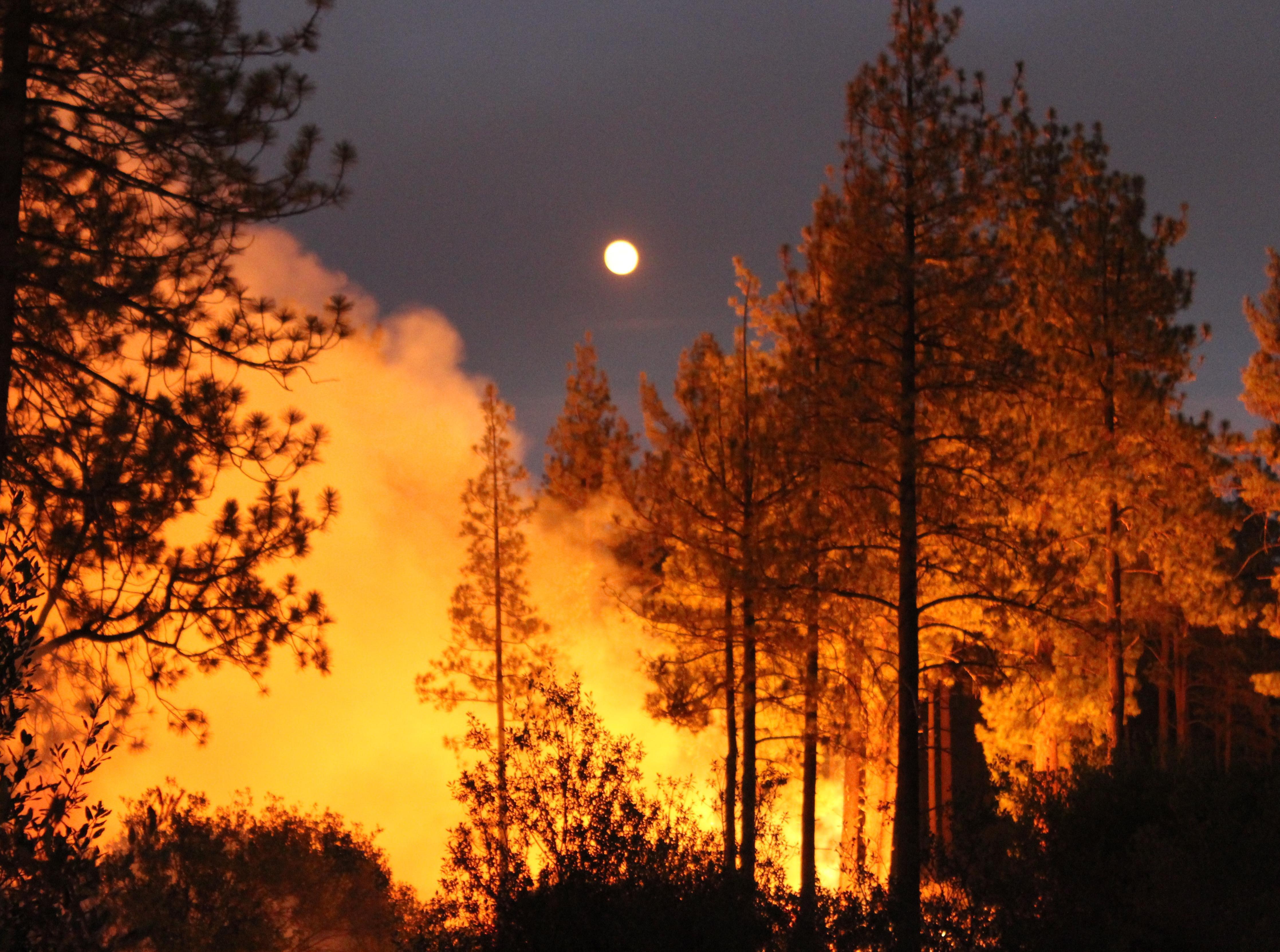 KALIFORNIJA Najmanje sedam mrtvih u požarima
