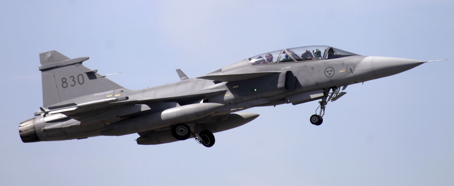 Ptice srušile švedski Gripen, pilot preživio