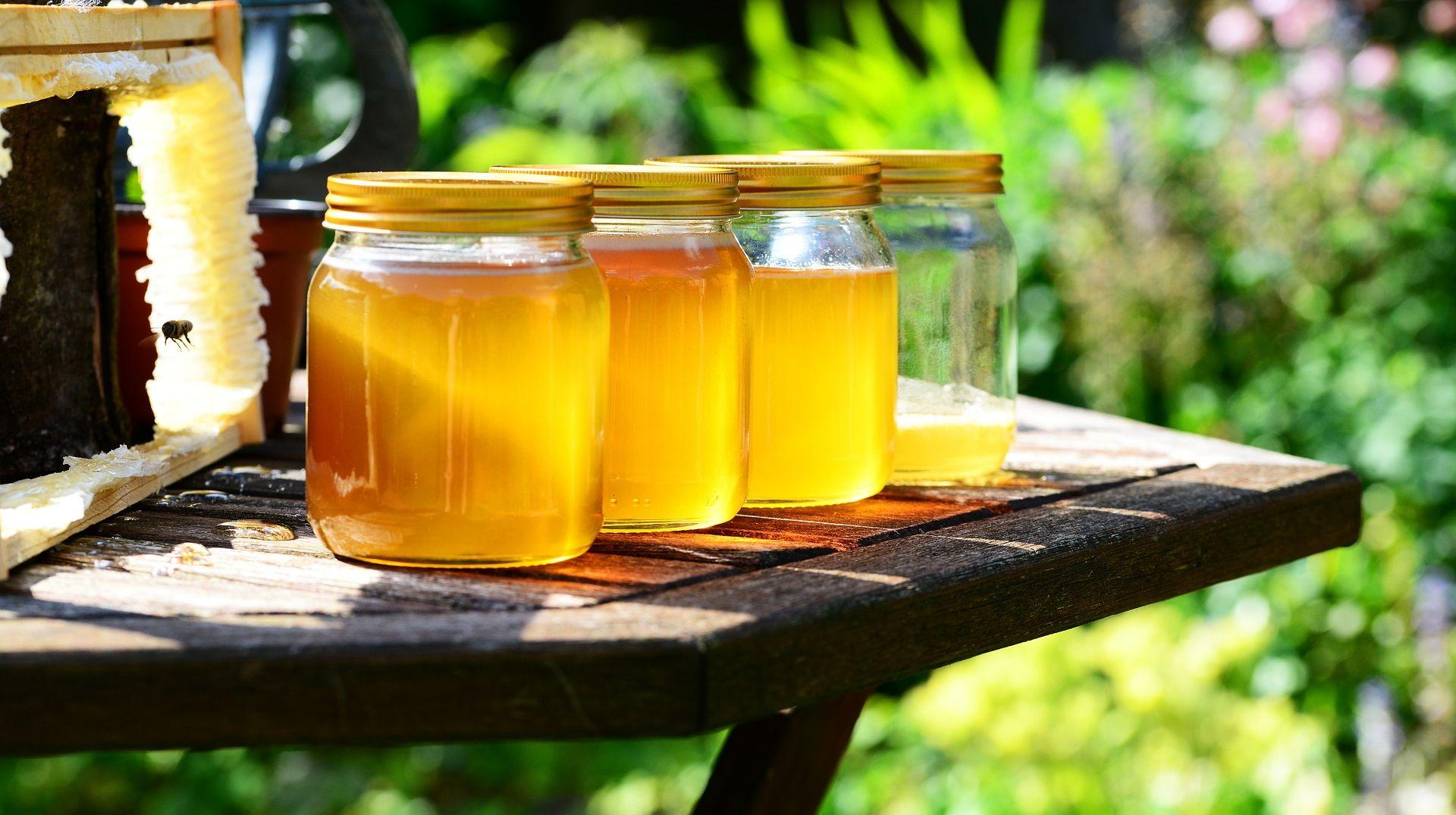Prvašićima staklenka domaćeg meda besplatno
