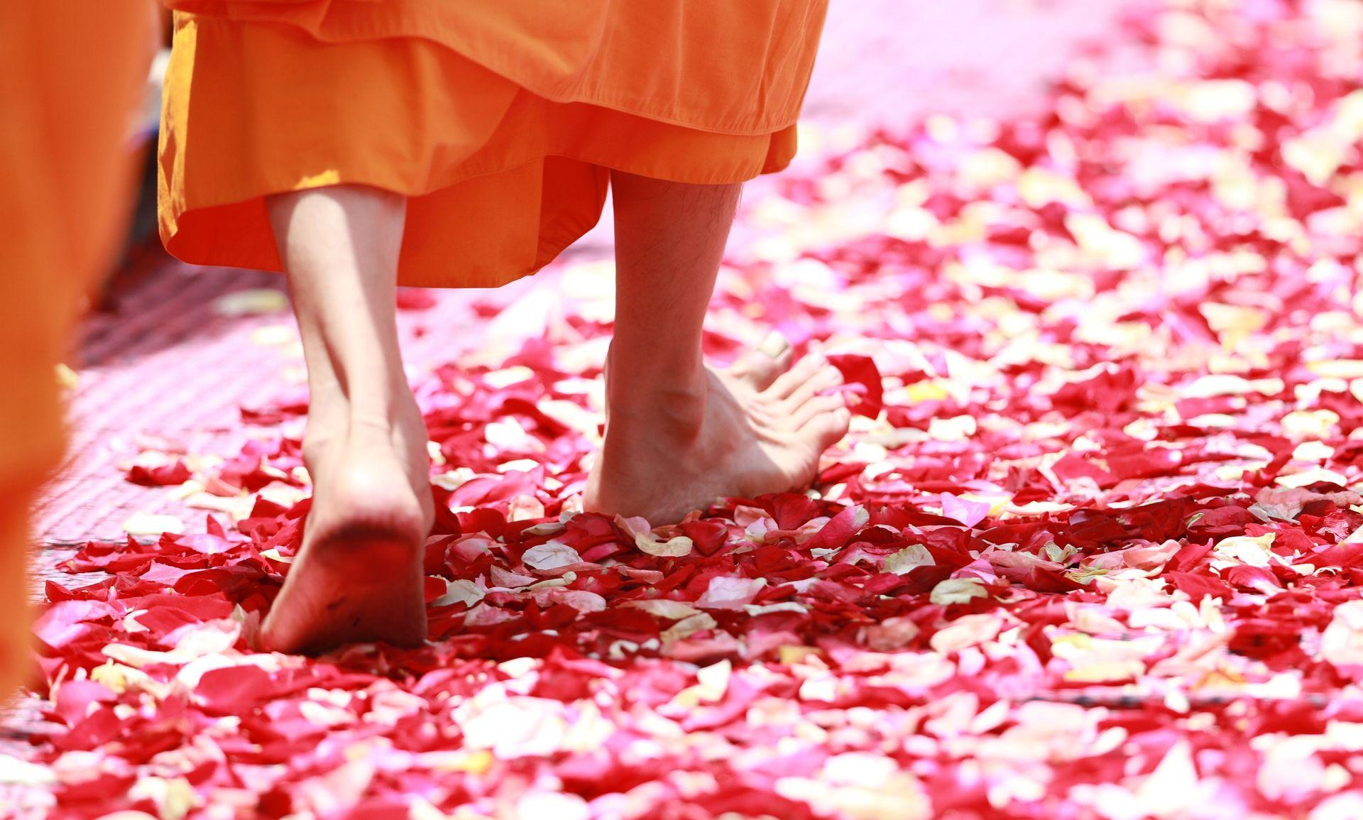 FELJTON Budistička redovnica u borbi protiv predrasuda o ženskoj duhovnosti