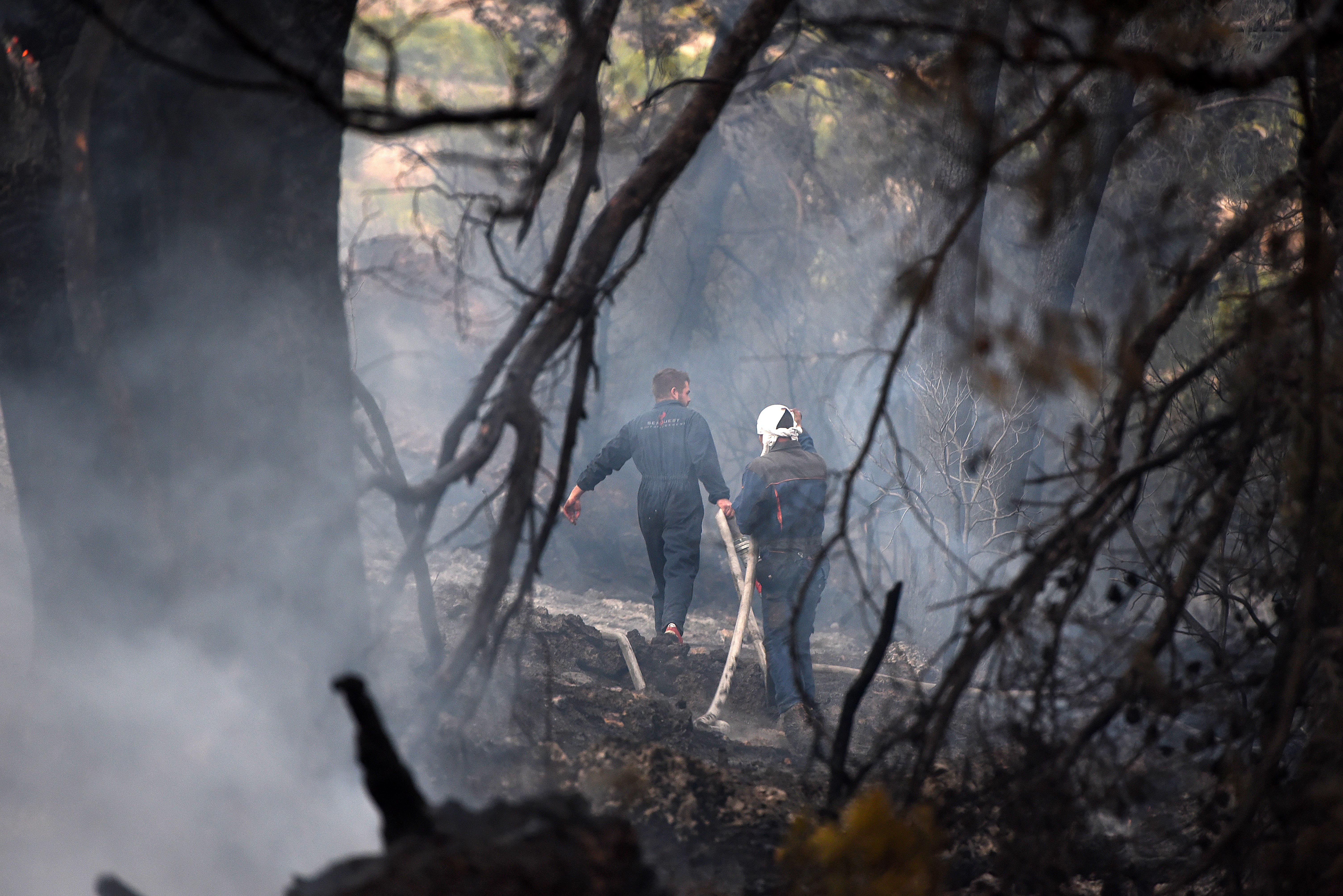 Bura rasplamsala požar kod Postupa, brzo stavljen pod nadzor