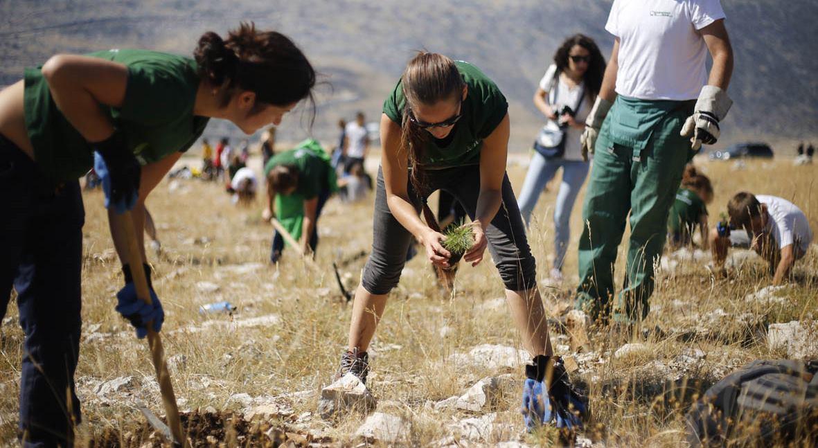 Volonteri Greenpeacea priključili se kampanji 'Boranka'