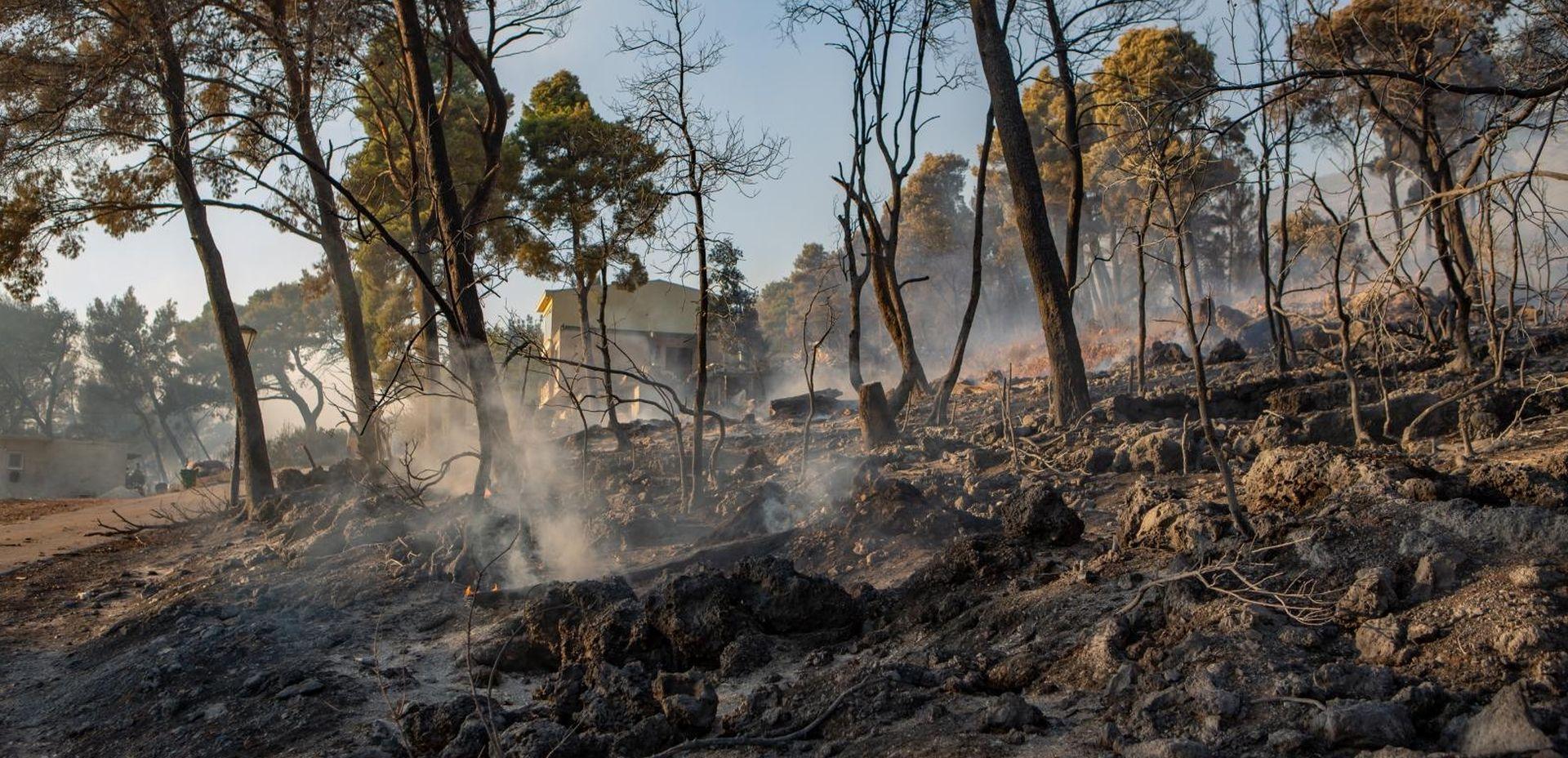 Zbog požara u Orebiću i Kuli Norinskoj proglašena elementarna nepogoda