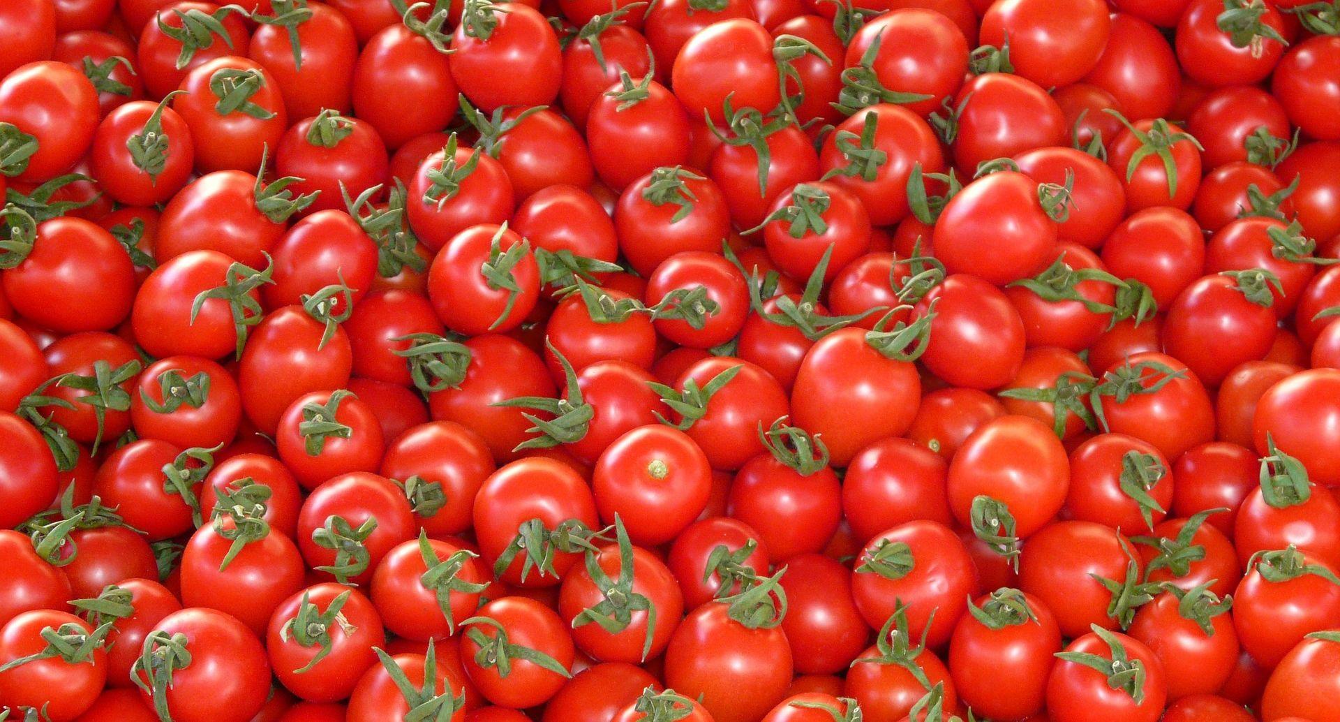 PRONAĐENI PESTICIDI S tržišta povučene talijanske rajčice