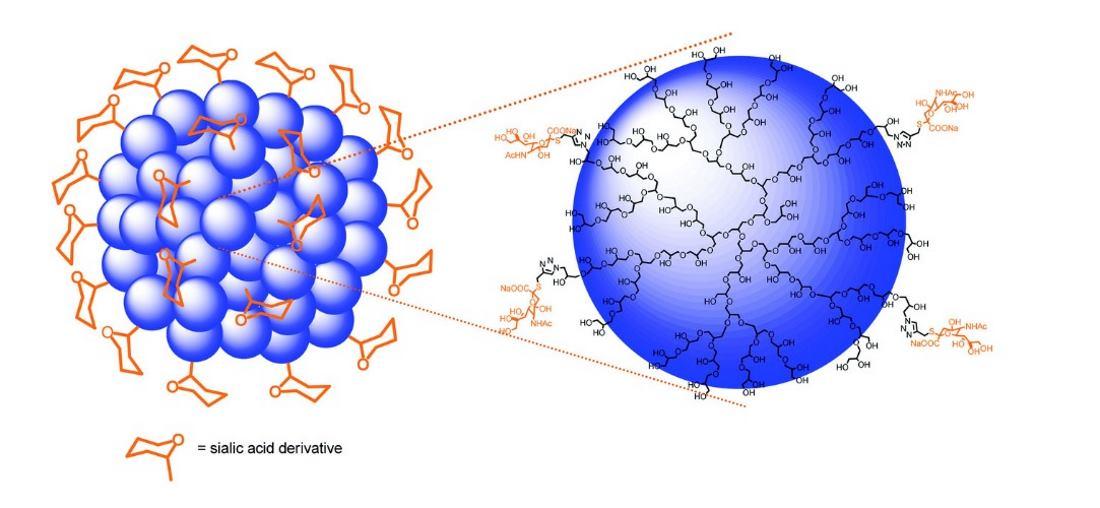 Projekt Marie Curie GLYCOVAX uspješno provodi svoj program