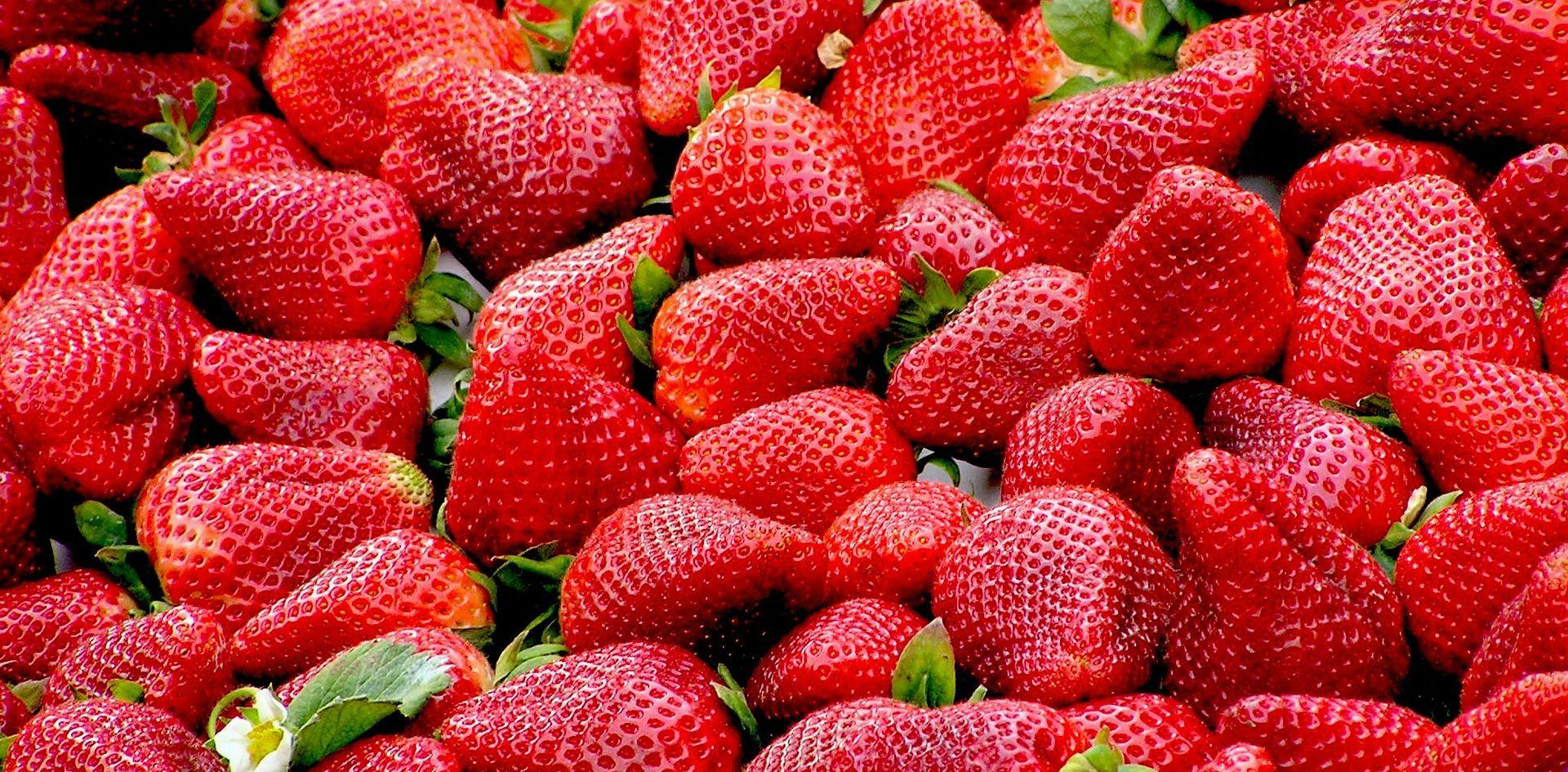 Bivša zaposlenica farme jagoda podmetala igle u jagode