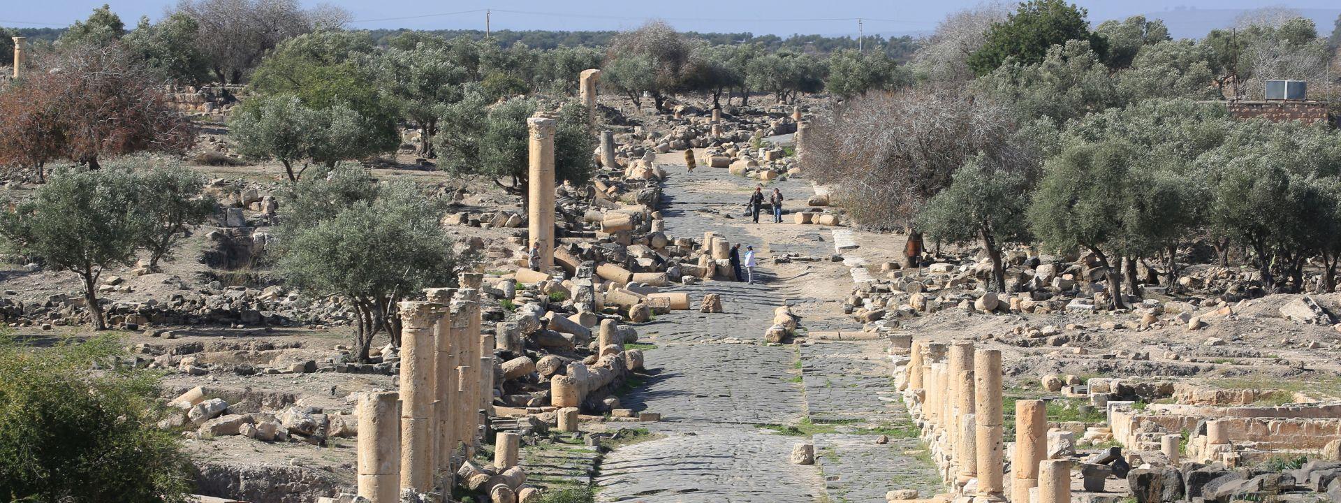 SOHR Islamska država usmrtila 700 zatvorenika u istočnoj Siriji