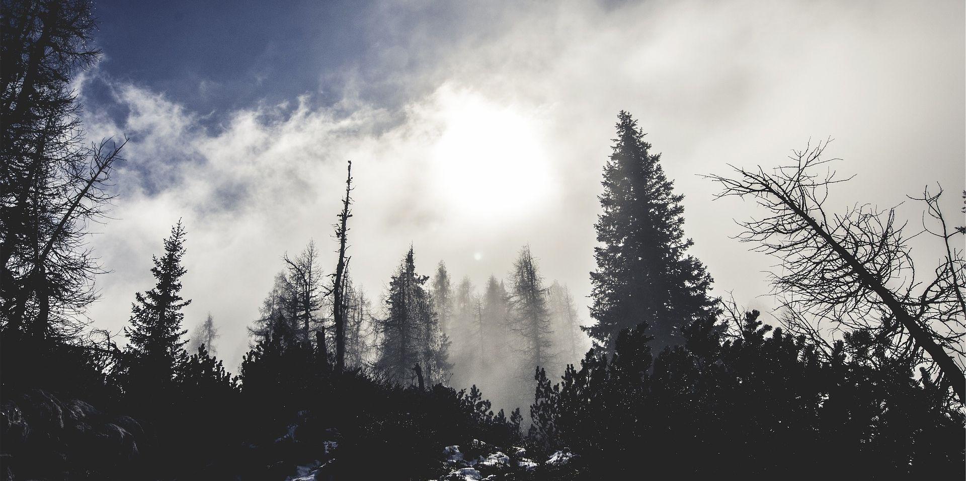 Na Jadranu većinom sunčano, u unutrašnjosti oblačno i maglovito