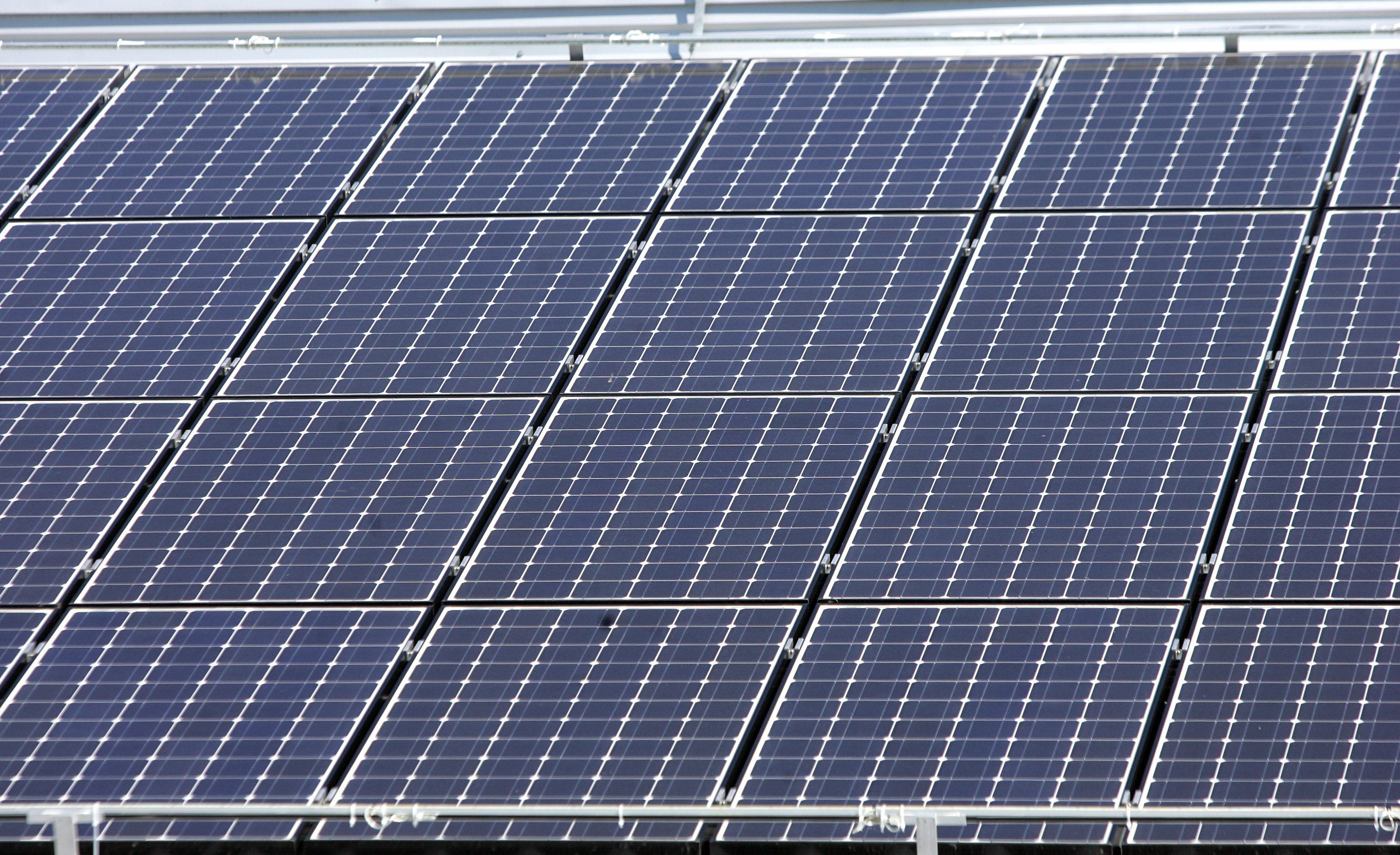 Ekološke udruge traže od Vlade snažni prelazak na obnovljive izvore energije