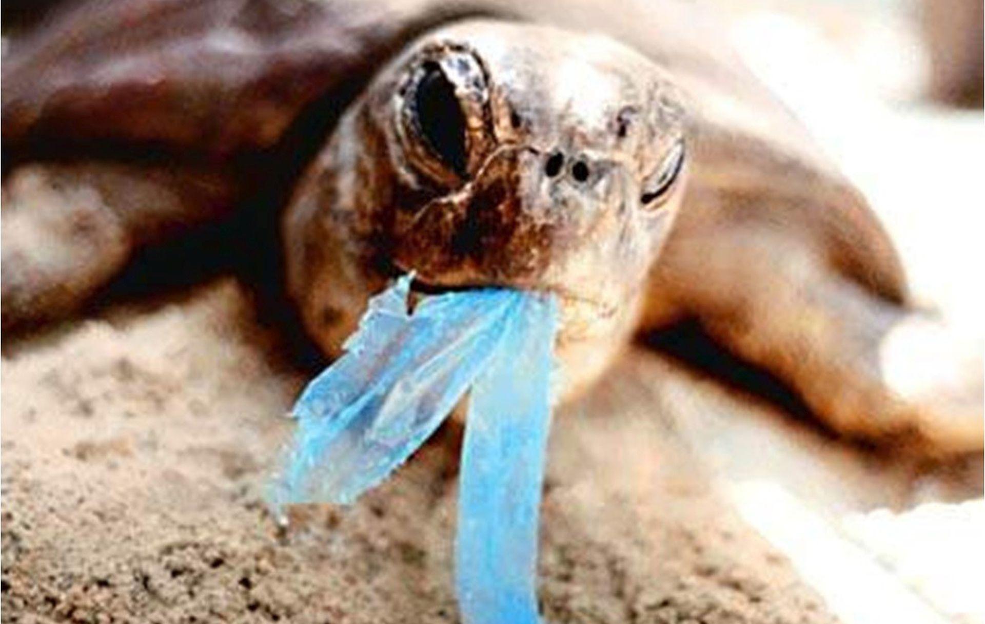 PRIJATELJI ŽIVOTINJA Plastična vrećica ne smije biti besplatna