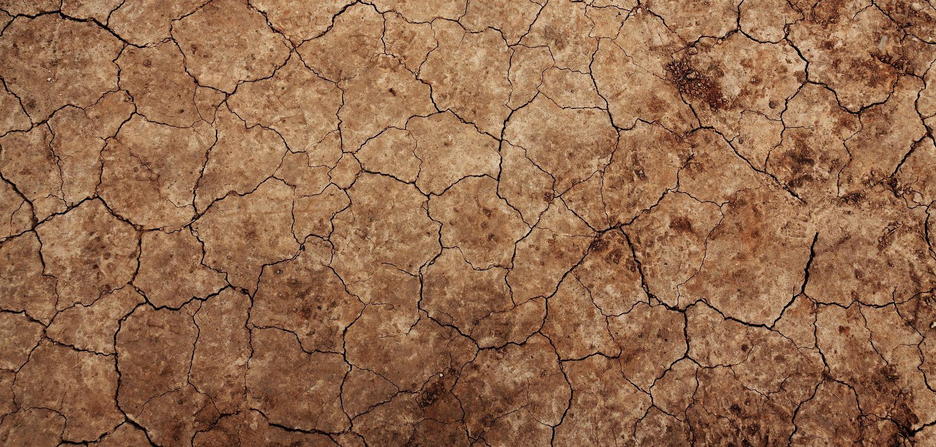 Prošla godina četvrta najtoplija u povijesti mjerenja