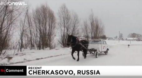 VIDEO: Jedna konjska snaga je dovoljna