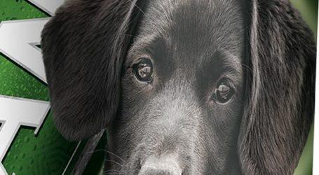 Pan i Lidl pozivaju na podršku skloništima za pse