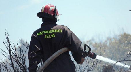 Gori borova šuma na Korčuli, na terenu 40 vatrogasaca