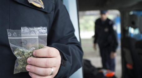 Policijski pas Maša u autu na Lučkom pronašao četiri kg marihuane
