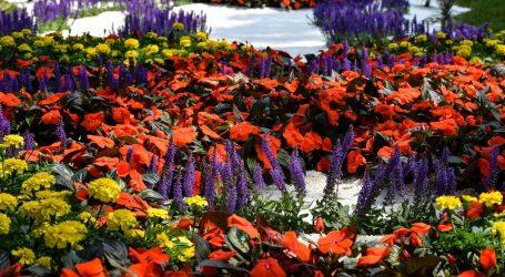 Na Floraartu više od 200 tisuća cvjetova