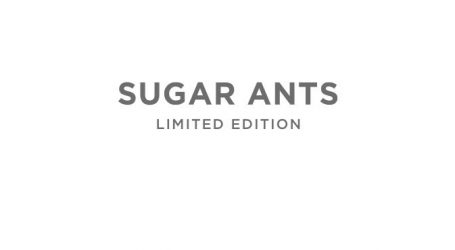 FOTO: Borovo i Sugar Ants ponovo pozivaju na udomljavanje životinja