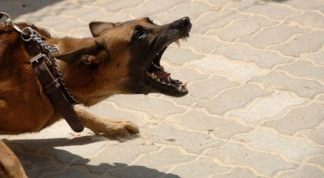Treći napad psa u Podravini
