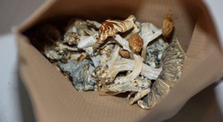 Policija kod 31-godišnjaka pronašla gljive, drogu i zmije