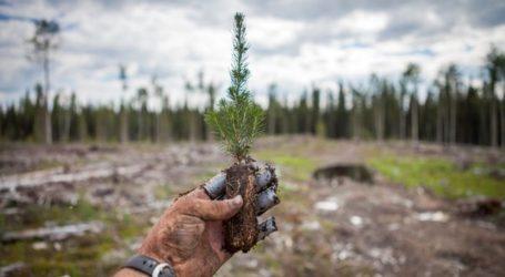 Ekološka akcija 'Šume su život' u subotu 27. travnja