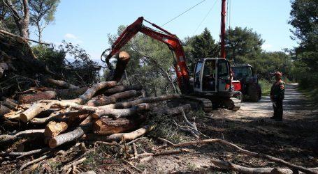 Podnesene četiri kaznene prijave zbog Park šume Marjan