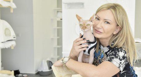 'Hotel za mačke bio mi je san – pretvorila sam hobi u posao'