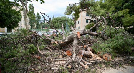 SPLIT Dva stabla pala i oštetila pet automobila
