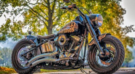 Okupljanje ljubitelja i vlasnika Harley Davidsona na Jarunu
