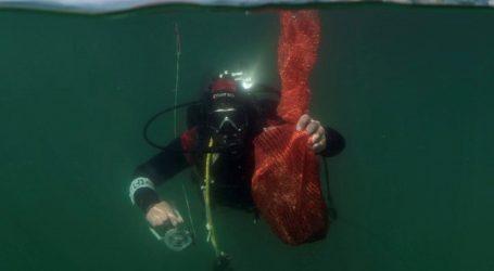'Čišćenje bez granica' – ronioci iz Hrvatske i Slovenije čiste podmorje Savudrijske vale