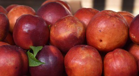 VIDEO: Ljetno voće važno je za očuvanje zdravlja