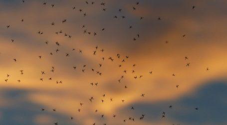Vlada odobrila pomoć za borbu protiv komaraca u Osječko-baranjskoj županiji