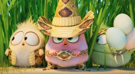 Kćeri Nicole Kidman sinhronizirale film 'Angry Birds 2'