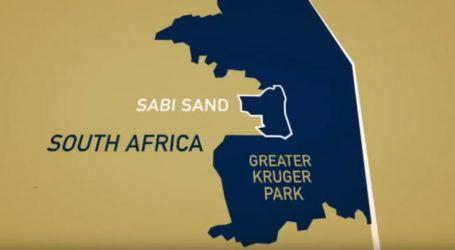VIDEO: Počela velika migracija životinja u Africi