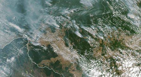 Iza požara u Amazoniji krije se međunarodna glad za govedinom i sojom
