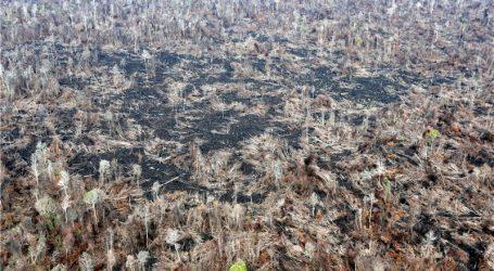 Indonežanin hoda unatrag kako bi upozorio na deforestaciju