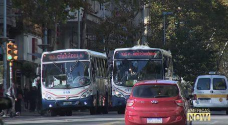 VIDEO: Urugvaj i dalje razvija industriju kanabisa