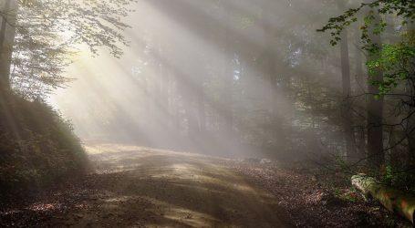 Pretežno sunčano, u nizinama u prvom dijelu dana magla i naoblaka