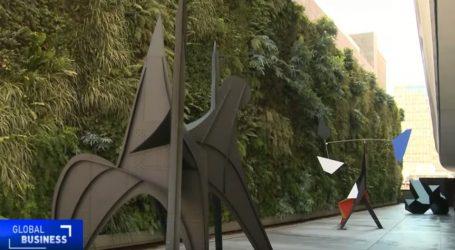 VIDEO: Najveći zeleni zid u Sjedinjenim Američkim Državama