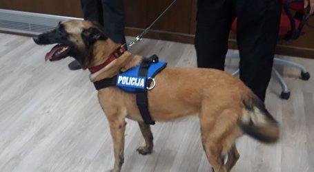 Policijski pas Maša pronašao 2199 grama heroina kod Srbina i Makedonca