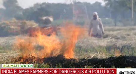 VIDEO: Poljoprivrednici krivi za zagađenje u New Delhiju?