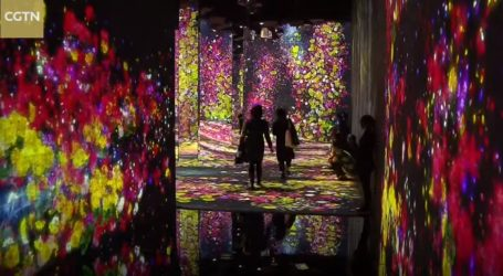 VIDEO: TeamLab otvara drugi muzej