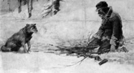 Na današnji dan prije 103. godine umro je pisac Jack London