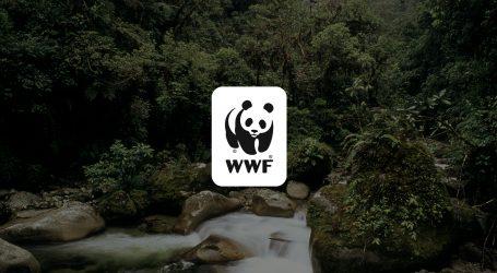 VIDEO: Otpad od hrane među najvećim pošastima današnjice!