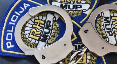 Policija objavila detalje velike akcije u Istri: Šestorka na uvozu automobila utajila najmanje 4.3 milijuna kuna