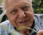 Sir David Attenborough najavio novu dokumentarnu seriju