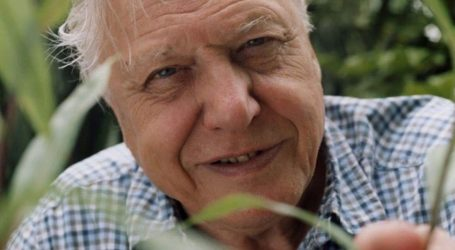 Sir David Attenborough najavio novu dokumentarnu seriju