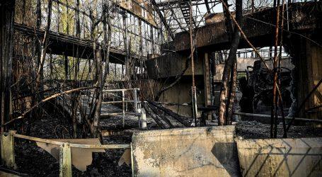 POLICIJA: Požar u njemačkom ZOO-u uzrokovao kineski lampion