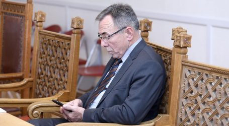 Batinić kaže da HNS na parlamentarnim izborima želi pet do sedam mandata
