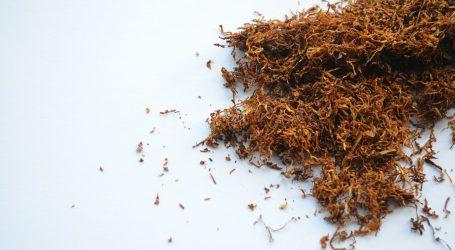Istraga protiv 36 osoba zbog sumnje u šverc duhana